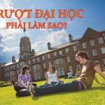 Nếu trượt đại học, thì phải làm gì?
