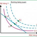 Kinh tế học (P18: Lựa chọn của người tiêu dùng)