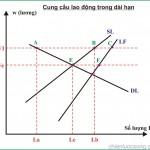 Kinh tế học (P5: Chỉ số kinh tế vĩ mô trong dài hạn)