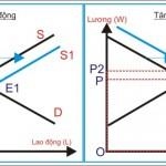 Kinh tế học (P26: Thị trường lao động P2)