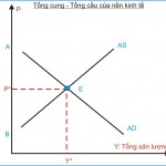 Kinh tế học (P30: Các mô hình trong Kinh tế vĩ mô)