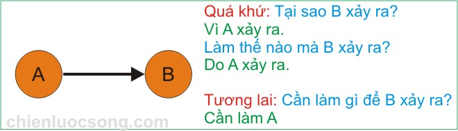 tu duy logic- p5 why va what