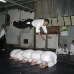 Sống với tinh thần Aikido