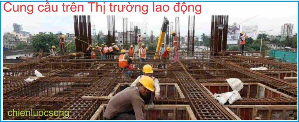 Cung cầu lao động