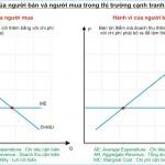 Kinh tế học (P33: Độc quyền mua)
