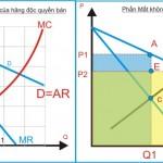 Kinh tế học (P22: Độc quyền bán)