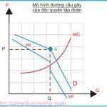 Kinh tế học (P24: Thị trường cạnh tranh không hoàn hảo P2)