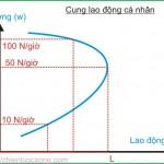 Kinh tế học (P25: Thị trường lao động P1)
